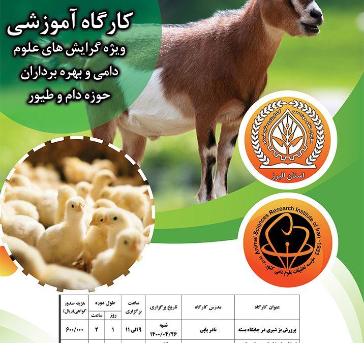 آغاز ثبت نام دوره های آموزشی بز شیری وجوجه گوشتی مهلت 22 تیر